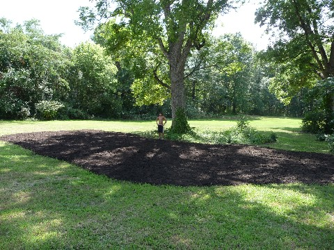Mulching Pecans with Compost Watkinsville 018 Medium Web view.jpg